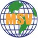 MSV International Inc.